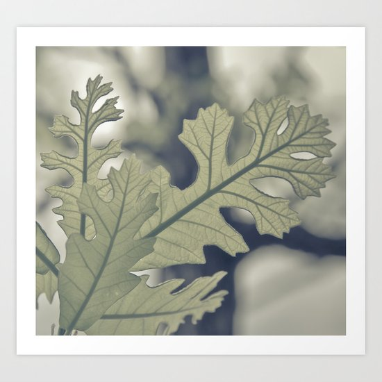 I Must Have Dreamt Myself Astray Art Print