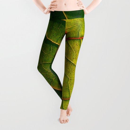 leaf structure macro IV Leggings