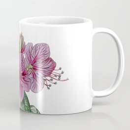 Evergreen Daurian Rhododendron / W. Curtis 1857 Coffee Mug