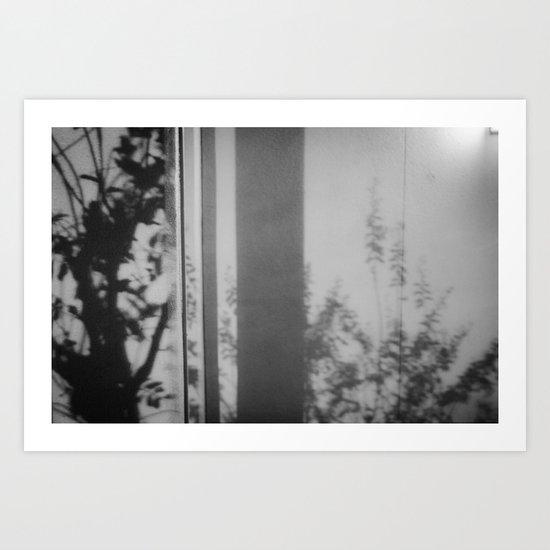 Plant shadows  Art Print