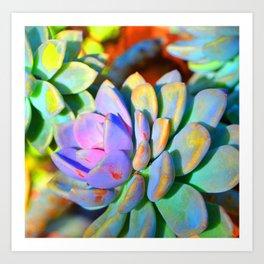 Succulent Color - Botanical Art by Sharon Cummings Art Print