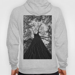 Forest black and white 17 Hoody
