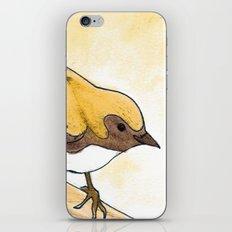 Yellow Blue Warbler iPhone & iPod Skin