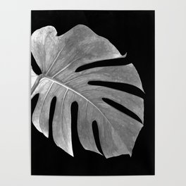 Black and White Monstera Leaf Poster