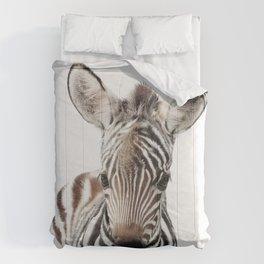 Zebra Foal Comforters