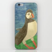 puffin iPhone & iPod Skins featuring Puffin by Danielle Gensler