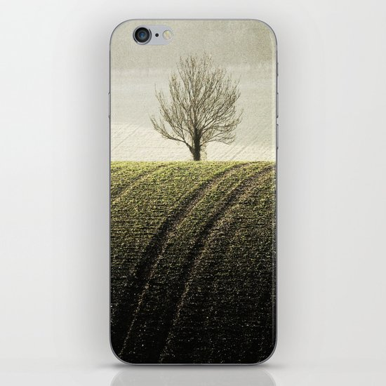 Rural Carpet iPhone & iPod Skin