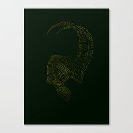 I am Loki, of Asgard Canvas Print