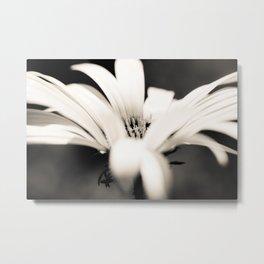 black and white Metal Print