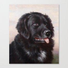 The Newfoundland Dog - Carl Reichert Canvas Print