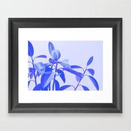 Rubber Plant Riso Framed Art Print