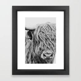 Scottish Highland Cow - Curls Framed Art Print