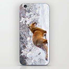 Fire 'n Ice .:. Red Fox in the Snow iPhone Skin
