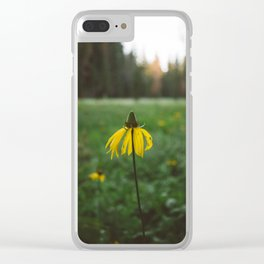 Yosemite National Park XIV Clear iPhone Case