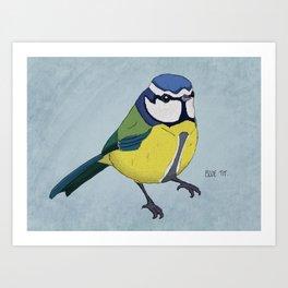 The Blue Tit Art Print