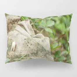 Tooth & Clothing, Killing Fields, Cambodia Pillow Sham