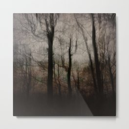 Darkness in the Forest Metal Print