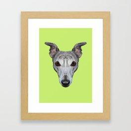 Whippet // Green Framed Art Print