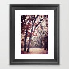 Last One for 2012 Framed Art Print