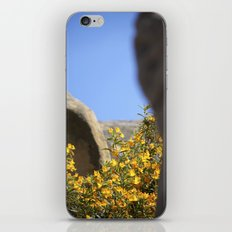 Take A Break iPhone & iPod Skin