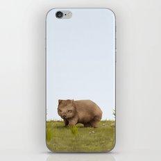 Common Wombat (Vombatus ursinus) iPhone Skin