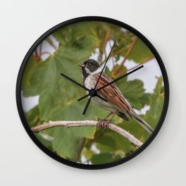 Reed Bunting Wall Clock