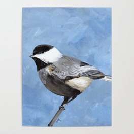 Chickadee Art, Blue Painting Poster