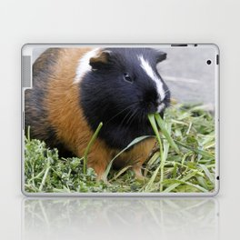 Lovely Guinea Pig Laptop & iPad Skin