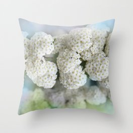 the beauty of a summerday -53- Throw Pillow