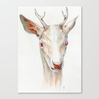 stag Canvas Prints featuring Stag by Brandon Keehner