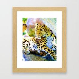 The Leopard is Spot On Framed Art Print