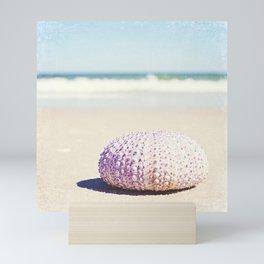 Sea Urchin Beach Photography, Seashell Blue Purple Art, Shell Coastal Ocean Photo Mini Art Print