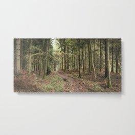 Oakenhill Woods Metal Print