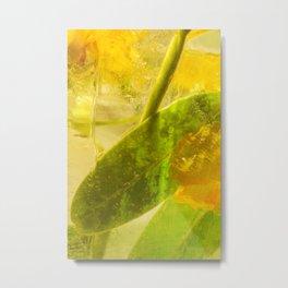 Locust Tree #23 Metal Print