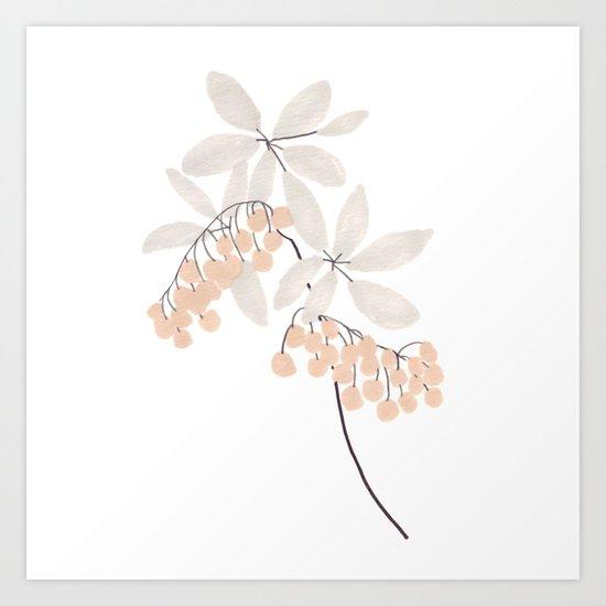 Enkianthus Flower Art Print