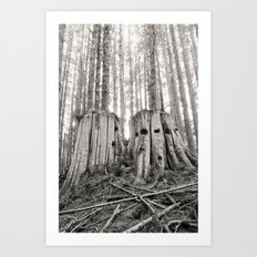Nurse Stump Pacific Northwest Forest Cedar Trees Sepia Print Art Print