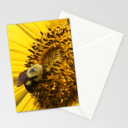 Bumblebee on Sunflower Stationery Cards