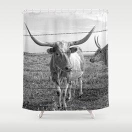 Longhorn Cows Shower Curtain