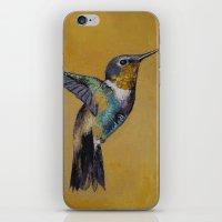 hummingbird iPhone & iPod Skins featuring Hummingbird by Michael Creese