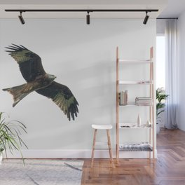 Red Kite in flight Wall Mural