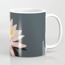 Water lillypads and lilly Coffee Mug