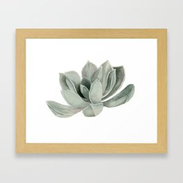 Succulent Plant Watercolor Painting Framed Art Print