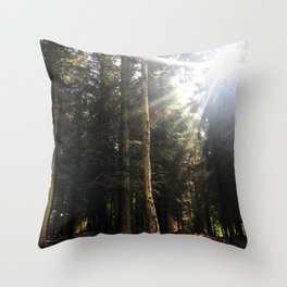 Sun Through Trees. Rushemere Country Park, Bedfordshire UK Throw Pillow