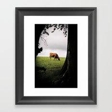 Grazing Cattle Framed Art Print