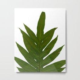 Tropical Fern Botanical Metal Print