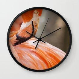 Miami Flamingo Feathers Wall Clock