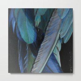 Feathers Metal Print