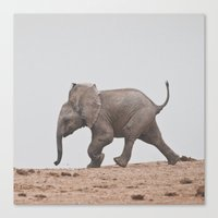 baby elephant Canvas Prints featuring Baby Elephant by Shaun Lombard