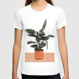 Calathea Planter T-shirt
