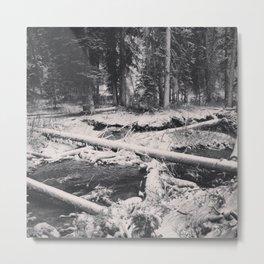 Untitled V Metal Print